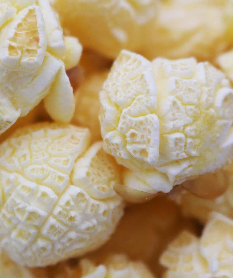 Gourmet Mushroom Popcorn Kernels
