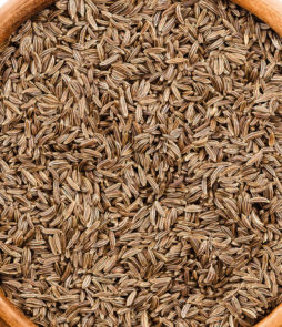bulk carraway seeds for sale
