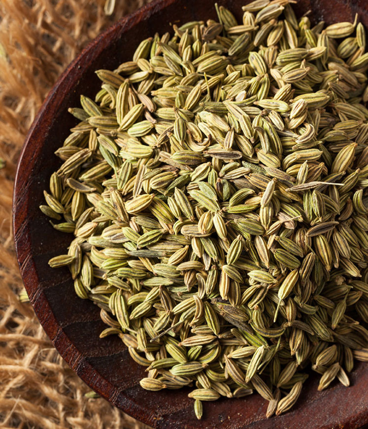 bulk fennel seeds